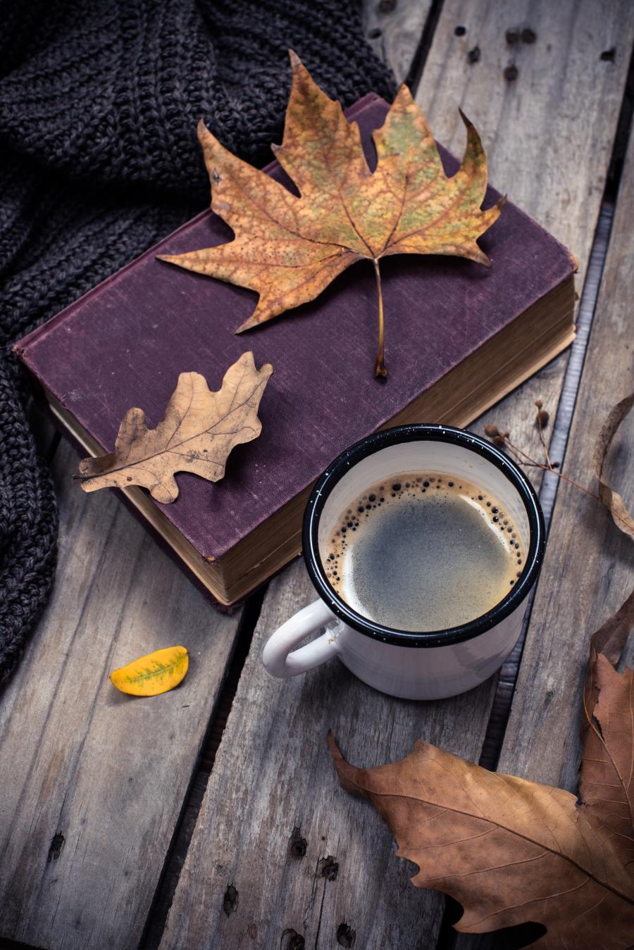 Efterårsbøger